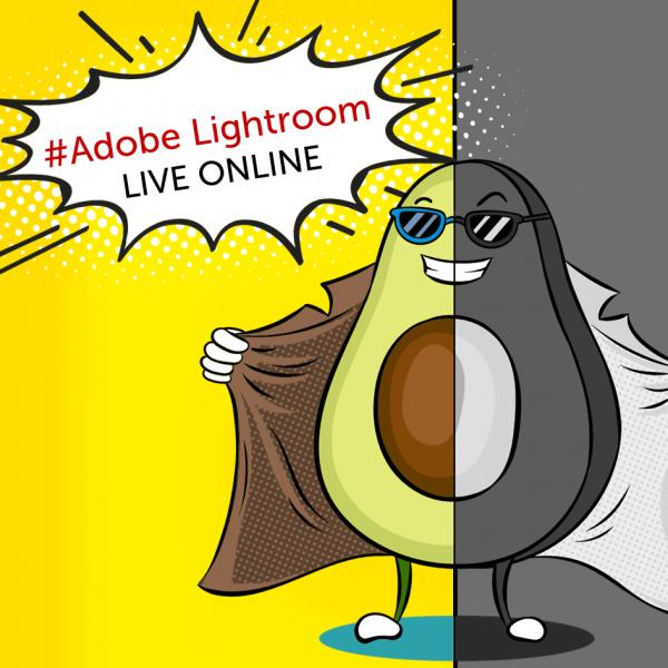 adobe-lightroom-online-skolenie