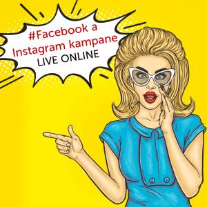 facebook-instagram-kampane-online-skolenie