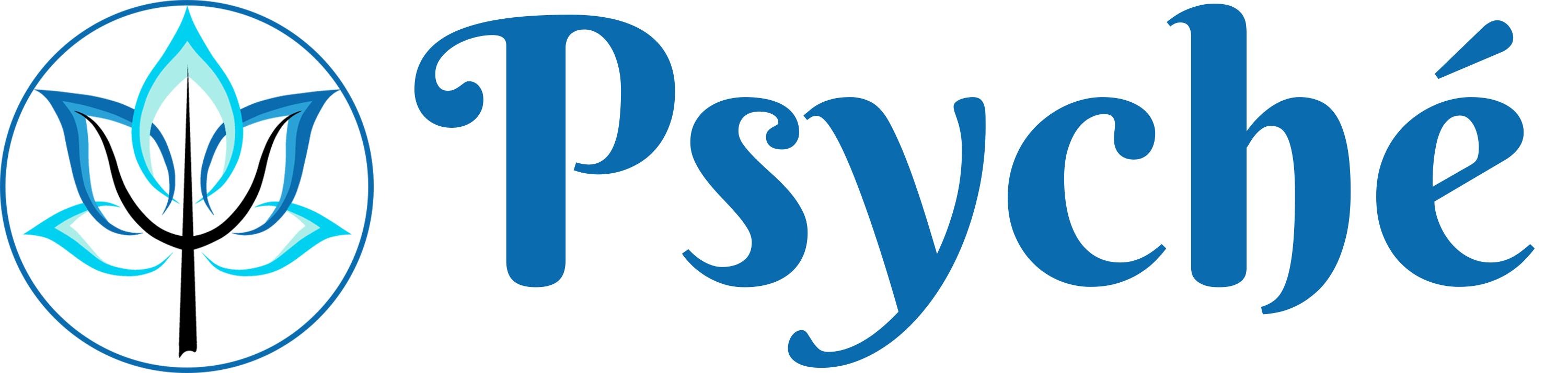 referencie-wooacademy-psyche