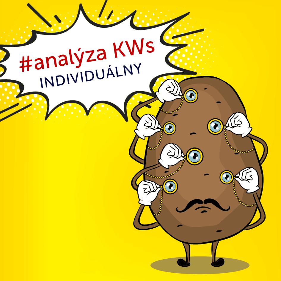 individualne-skolenie-analyza-klucovych-slov