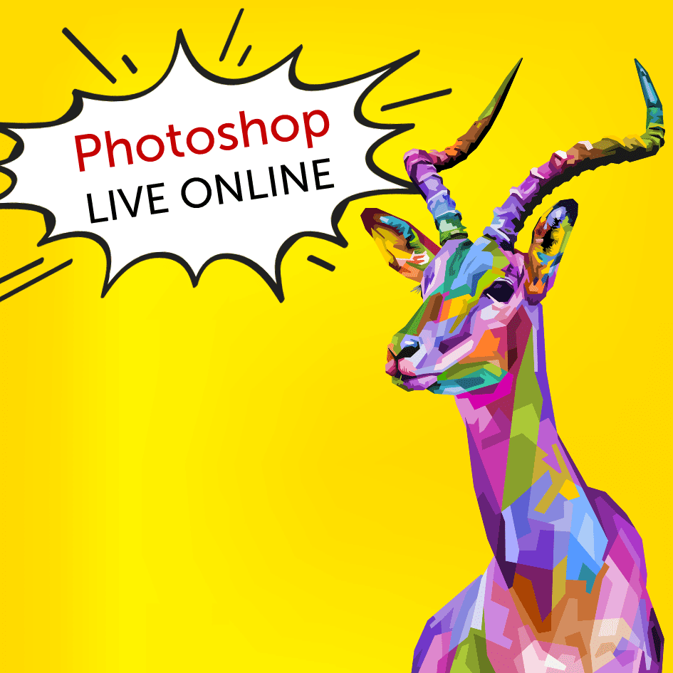 prakticky-online-workshop-adobe-photoshop