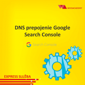 DNS prepojenie Google Search Console